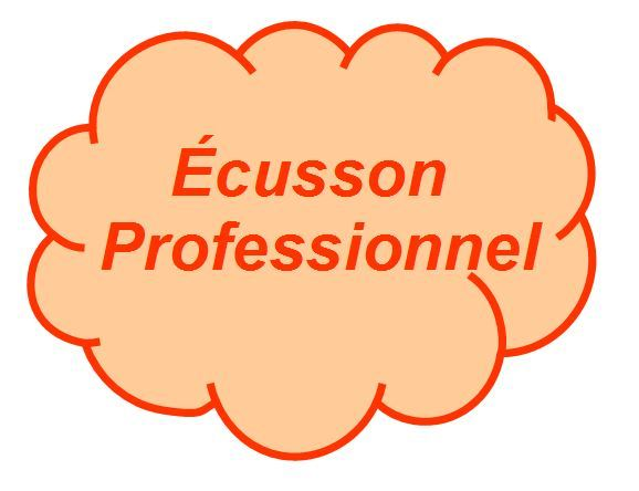 ecusson_professionnel